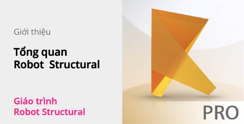 tong-quan-robot-structural